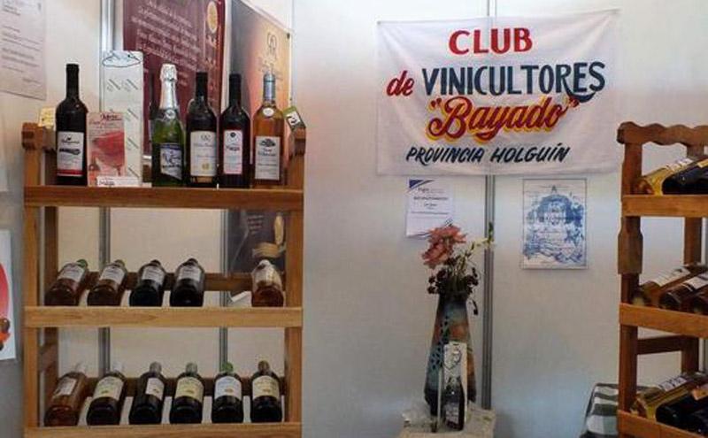 vinicultores festival 2