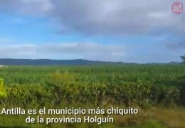 Así protege Antilla la Bahía de Nipe